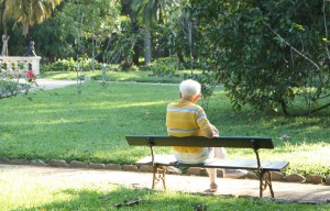 elderly.man on bench